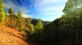 Mountain landscape, Gran Canaria, Canary islands, time-lapse. Footage