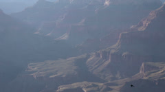 Tracking Hawks flying in Grand Canyon - stock footage