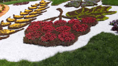 Fragment Flower Clock Zoom In Stock Footage