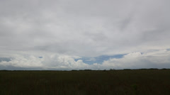 Open Sky Over Vast Everglades Grassland Stock Footage