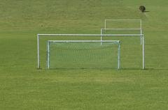 Goal posts on grass pitch. - stock photo