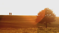 People Sihouette on Horizon during Beautiful Golden Sunset HD - stock footage