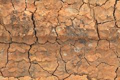 Dry terrain ground using as background Stock Photos
