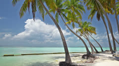 Maldives islands Stock Footage