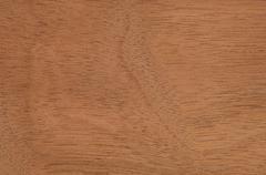 Wood surface, Crabwood (Carapa guianensis) full frame - stock photo