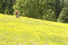 Young woman mountain biking in field Stock Photos