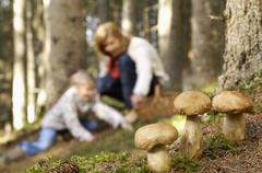 Mother and daughter searching mushrooms in forest Stock Photos