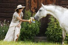 horse smelling at bunch of flowers from woman\\\'s hand - stock photo