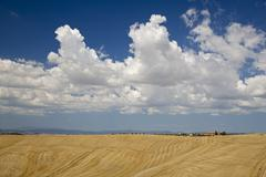 Italy, Tuscany, Val d'Orcia, Corn fields, farmstead in background Stock Photos