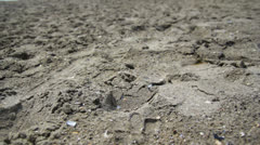 Beach Sand - stock footage