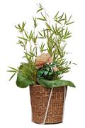flower arrangement of peon flower, lotus leaf and twigs of bamboo. - stock photo