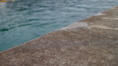 Labadee Haiti Water Ledge - stock footage