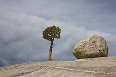 USA, California, Yosemite National Park, Olmsted point, Granitic rock and Stock Photos