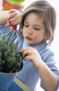 Boy (3-4) cutting herbs with scissors, close-up Stock Photos