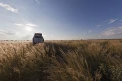 Africa, Botswana, Land vehicle passing through central kalahari game reserve - stock photo