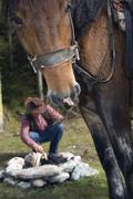 Austria, Salzburger Land, Altenmarkt, Young man at campfire, horse in - stock photo