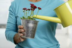 Senior woman watering flowers, mid section, close-up Stock Photos
