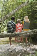 Austria, Salzburger Land, Family sitting on tree trunk, rear view - stock photo