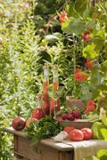 Austria, Salzburger Land, Vegetables, fruits and herbal essences in bottle on Stock Photos