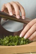 Person cutting parsley, close-up - stock photo