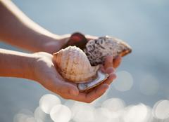 Croatia, Zadar, Girl holding shells at beach Stock Photos