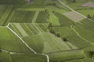 Stock Photo of Austria, South Tyrol, agrarian country