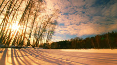 Sunset forest winter landscape, time-lapse. Stock Footage