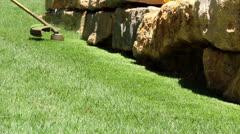 Lawn string trimmer cutting border B2 Stock Footage