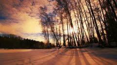 Sunset forest winter landscape, panning shot. Stock Footage