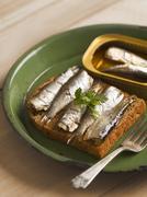 sardine sandwich - stock photo