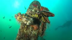 Propeller of Underwater Plane Wreck Stock Footage