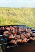 Appetizing barbecue on the nature Stock Photos