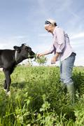 Germany, Saxony, Senior woman feeding grass to calf - stock photo