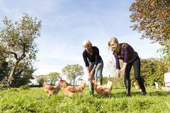 Germany, Saxony, Women together trying to catch hens in the farm Stock Photos