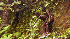 New Guinea children dive into a lake from a cliff. Stock Footage
