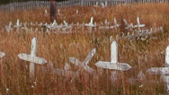 Stock Video Footage of Grass grows in a derelict cemetery.