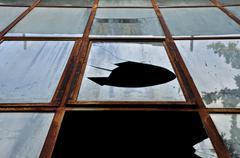 smashed rusty windows - stock photo
