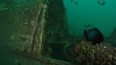 Cockpit of Underwater Plane Wreck Stock Footage