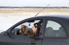 car journey - stock photo