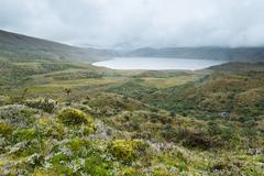 Pisayambo Lagoon Llanganates National Park Andes Mountains Ecuador - stock photo