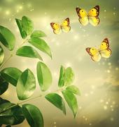 Butterflies on green star lights background Stock Illustration