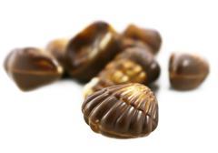 Chocolate seashell isolated  on the white background Stock Photos