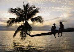 Thailand, Koh Phangan, Two boys (12-13) hanging out on palm tree overlooking Stock Photos