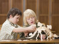 Boys (4-7) sitting with dinosaur skeleton, close-up Stock Photos