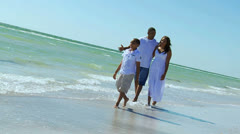 Happy African American Family Outdoors Beach Stock Footage
