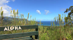 Aloha Bench  - stock footage
