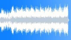 Slip N Slide (WP) 07 Alt1 60 (60s, 70s, 80s funk, bluesy, soulful, corporate) Stock Music