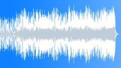 Slip N Slide (WP) 08 MT 30 (60s, 70s, 80s funk, bluesy, soulful, jazzy)) Stock Music