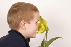 Boy (10-11) nosing a flower, portrait Stock Photos