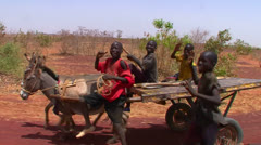 Boys lead a donkey cart along a road in Mali, Africa. Stock Footage